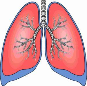 Trainingsmaske Atmung Lunge